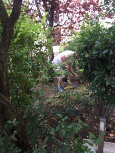 atelier de jardinage maison de retraite
