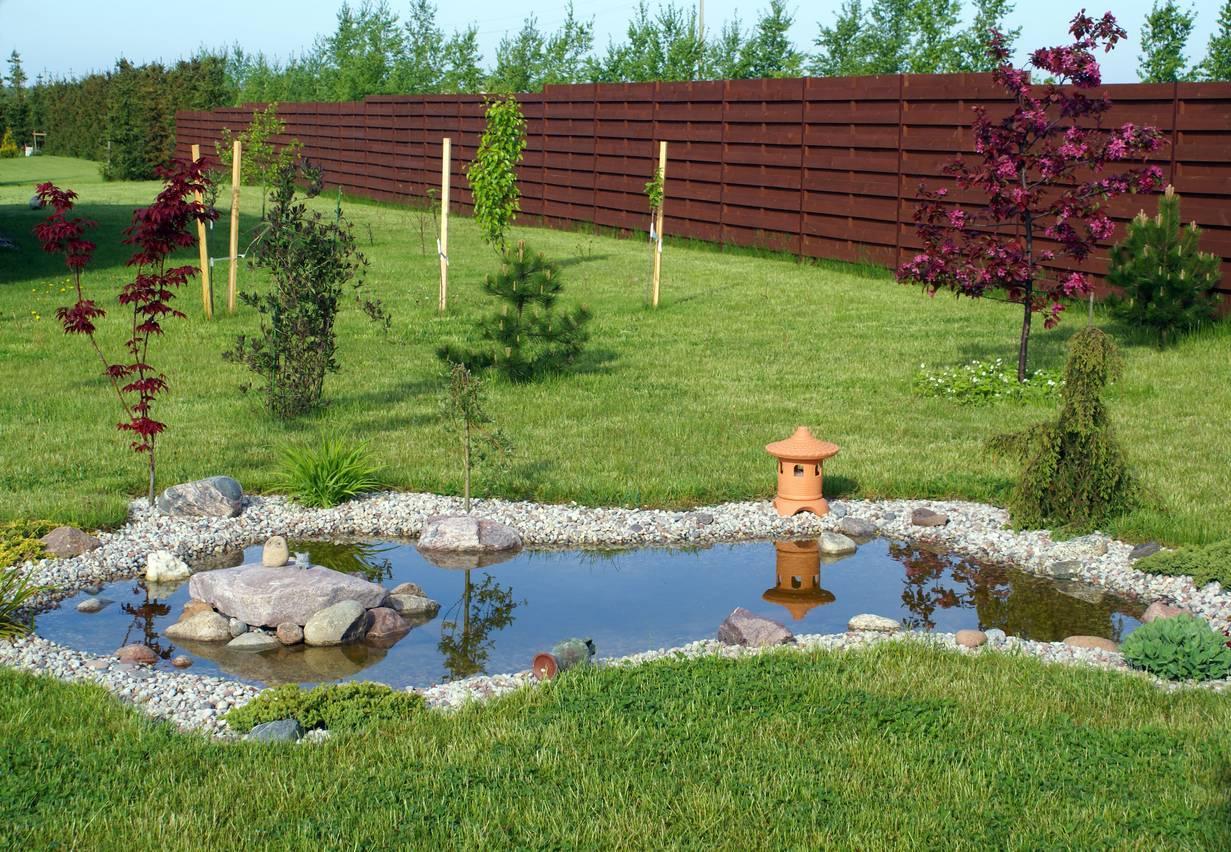 jardin japonais bassin