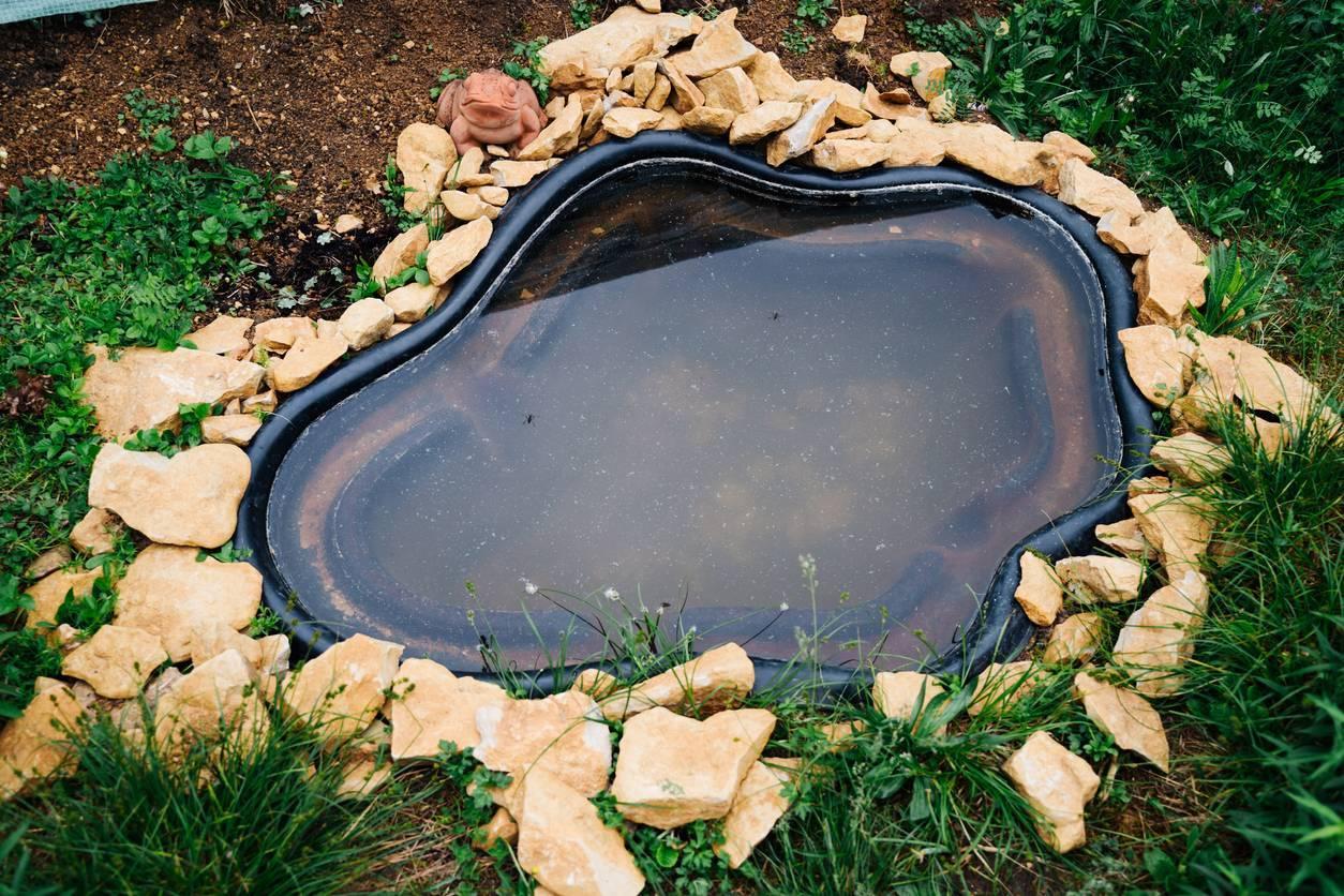 bassin d'agrément